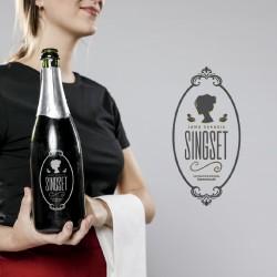 Logo Singset